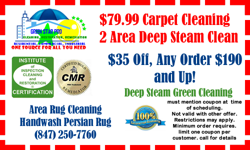 Carpet Cleaning Coupons Sofa Cleaning Coupons Tile