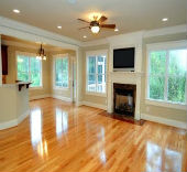 GreenSTAR Pro Hardwood Floor Cleaning